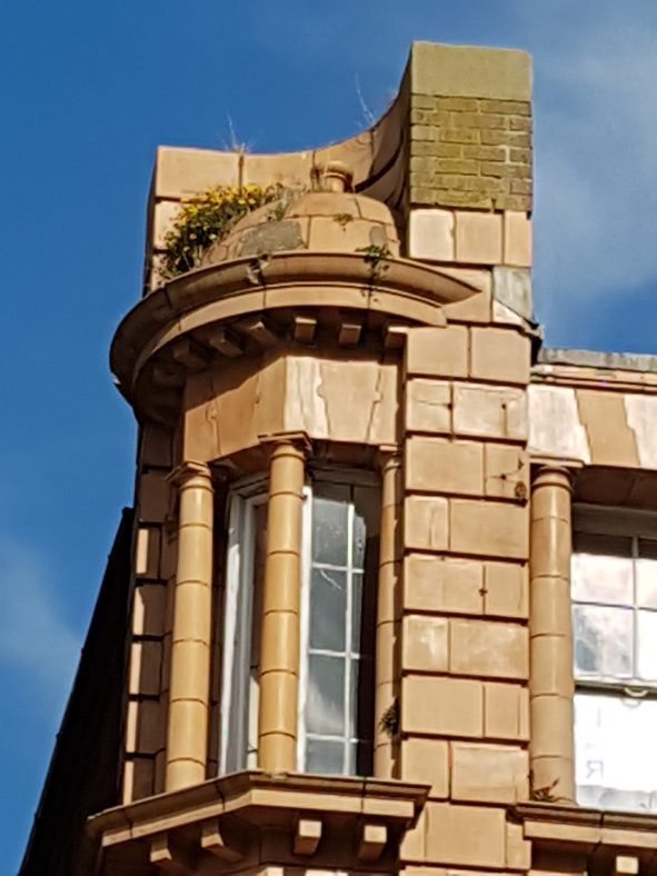 Close up of the top corner showing window design and revealing invading plant life.